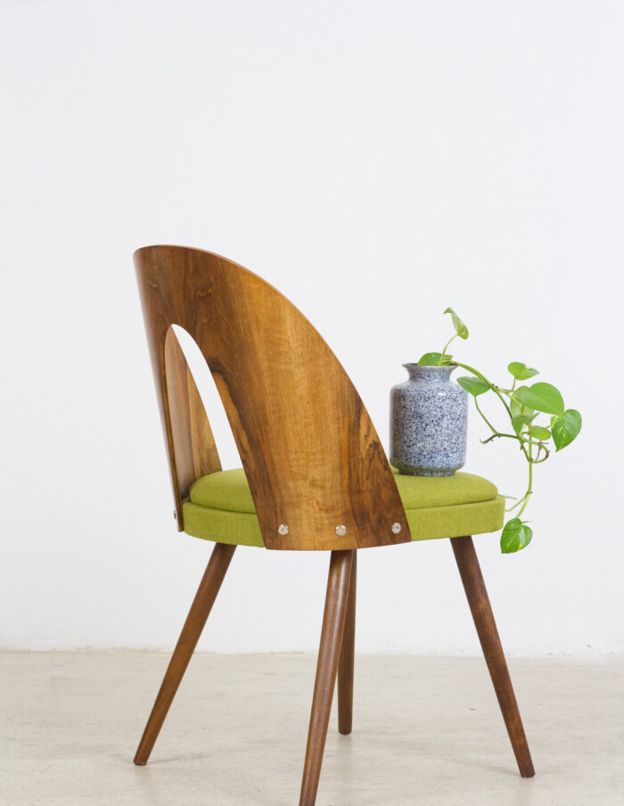 Perfectly Restored Tatra Dining Chair from the 60's-13