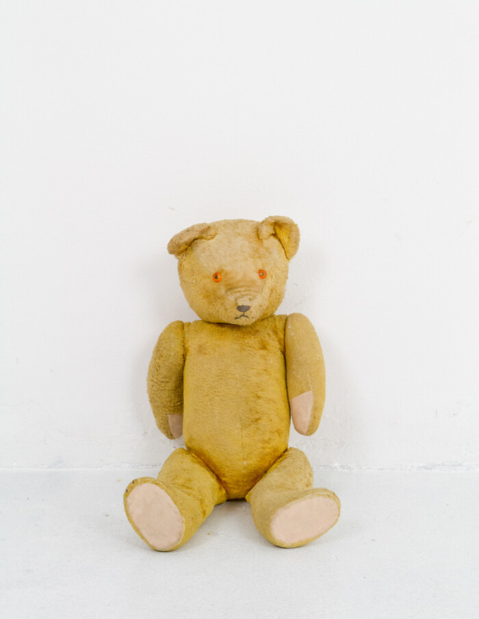 100 Years Old Bear Stuffed with Straw-2