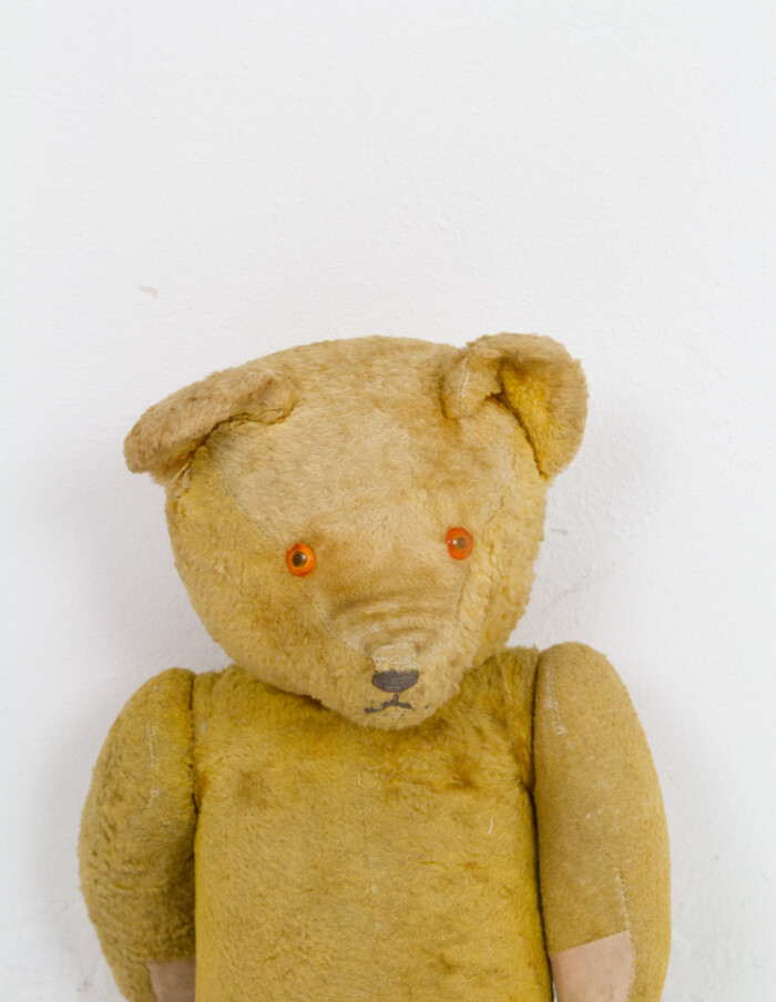 100 Years Old Bear Stuffed with Straw-3